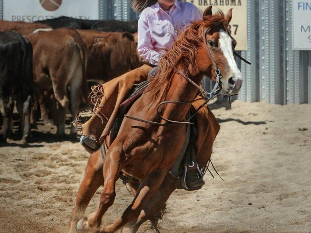 Comment bien choisir son matériel d'équitation ?